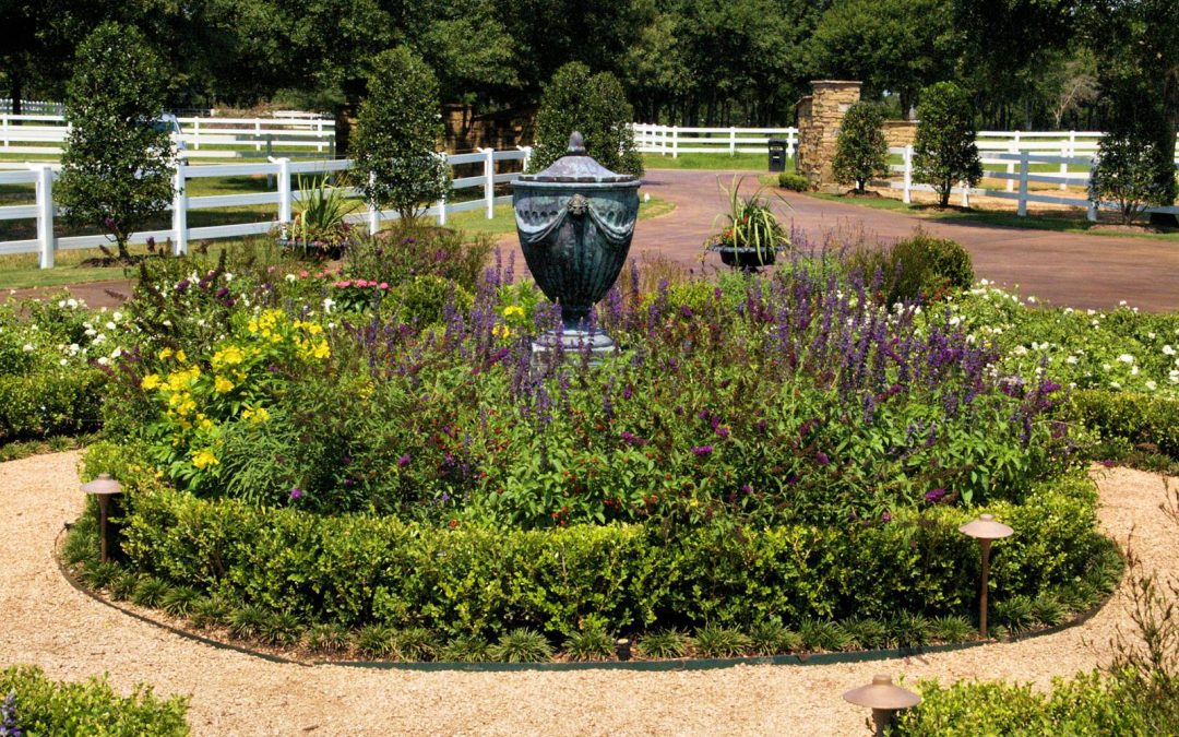 Texas Landscaping Ideas to Set Your Home Apart